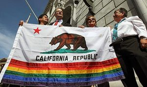 Gay_bear_flag